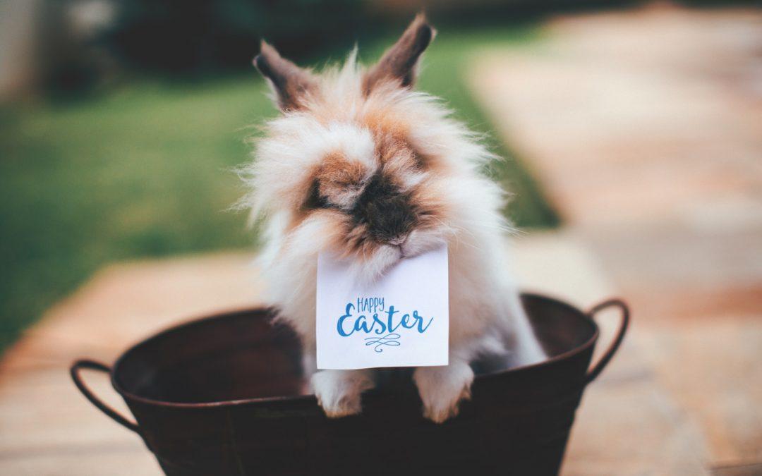 Hogyan töltsd egészségesebben a Húsvétot?