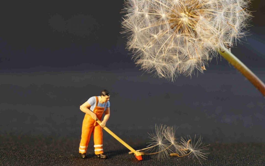 Van tökéletes állás egy introvertált számára?