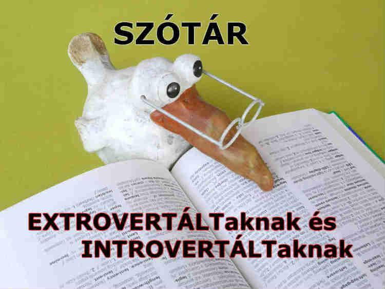 szótár extrovertáltaknak és introvertáltaknak