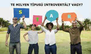 introvertáltság típusai