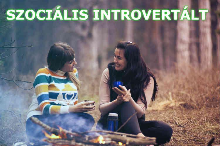 szociális introvertált
