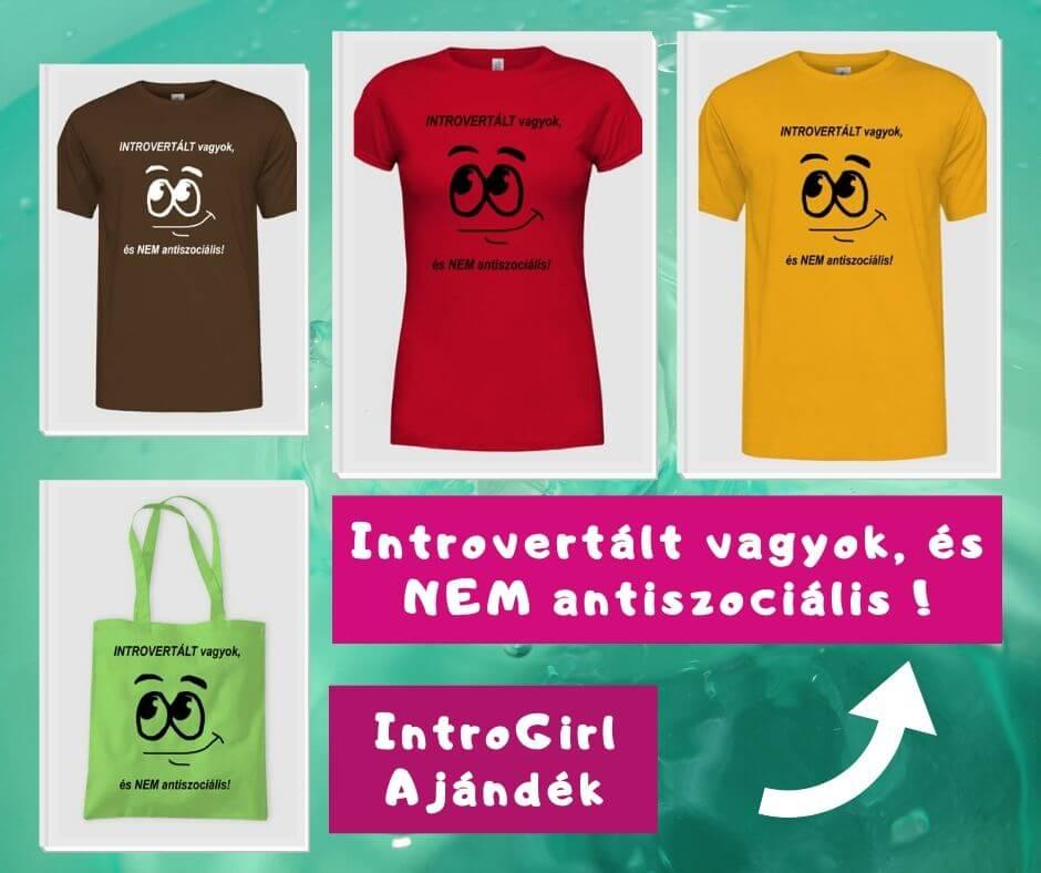 Introvertált vagyok nem antiszociális póló