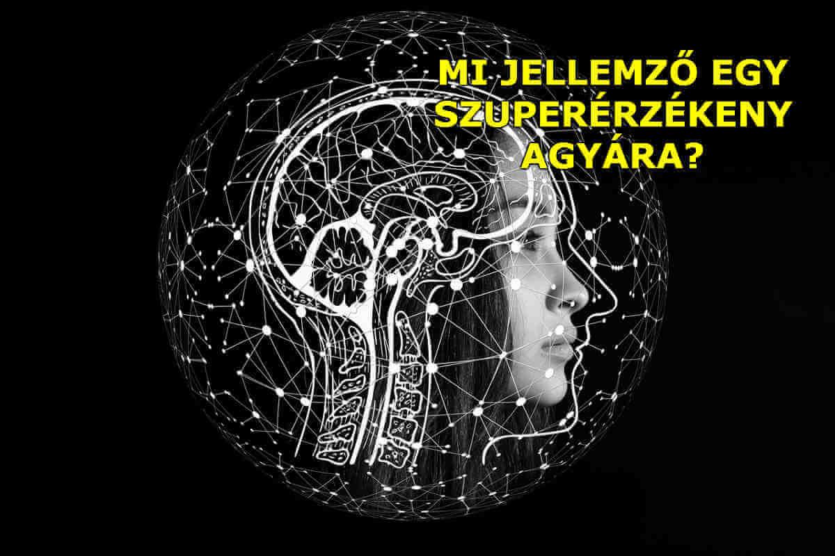 Mi jellemző egy szuperérzékeny agyára